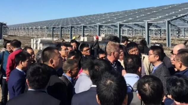 拥有国外顶级管理团队及最高生物安全防护水平,黑龙江明水猪场缘何沦陷