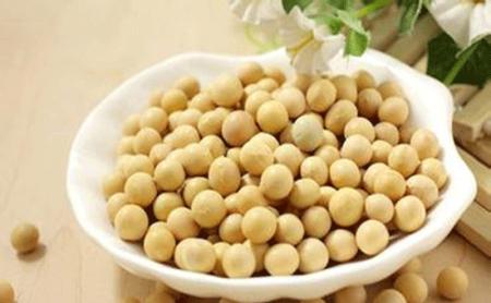 中美贸易谈到第九轮了,中国累计购买美国1300多万吨大豆