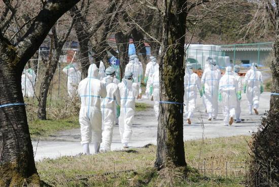 日本岐阜县惠那市养猪场确认日本国内第18例猪瘟