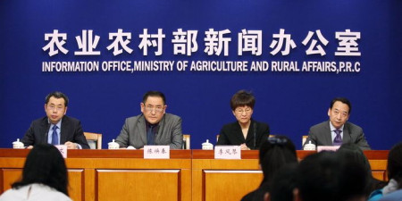 """北京一天吃掉17000头猪 """"猪肉大王""""预测肉价走势"""