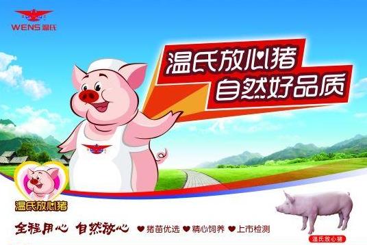 多养500万头猪却少赚了100亿,温氏今年要大力养鸡