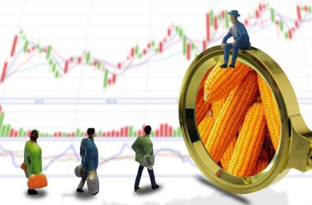 玉米刚涨几天就出现降价,哪个环节出现了问题?