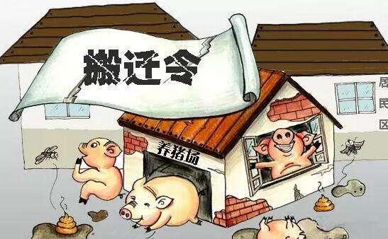 广东佛冈:10月前完成禁养区猪场关闭搬迁工作