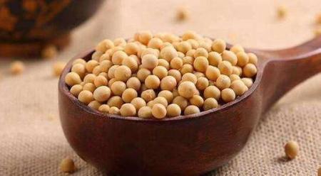 一季度大豆进口下滑 需求不振或是主因