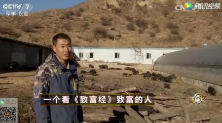 养殖农户詹鹏 养猪白手起家到年销700万的致富经!