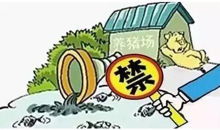 云南禁养区125户养殖场被拆迁,严查复养行为!