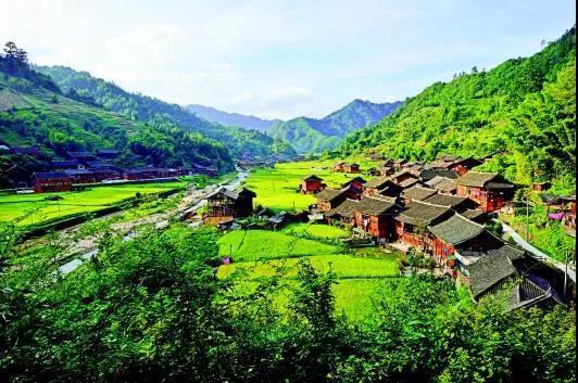 德康打造家庭农场,带领村民养出一条致富路