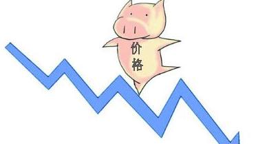 一年存栏减少近8000万头生猪,释放冻肉库存对后期猪价上涨利好