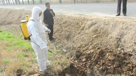 农业农村部派工作组赴海南督导非洲猪瘟防控