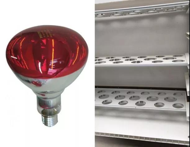 延长分娩舍加热灯的寿命,定制推车可用于干燥和存储闲置加热灯