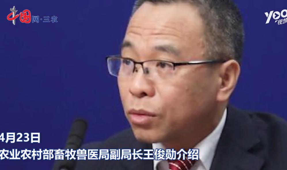 农业农村部:23个省解除猪瘟疫情 活猪价格或达历史新高