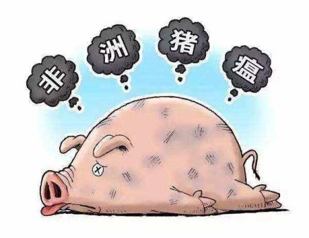 周汉林:非洲猪瘟传猪不传染人,正规渠道猪肉可以放心吃