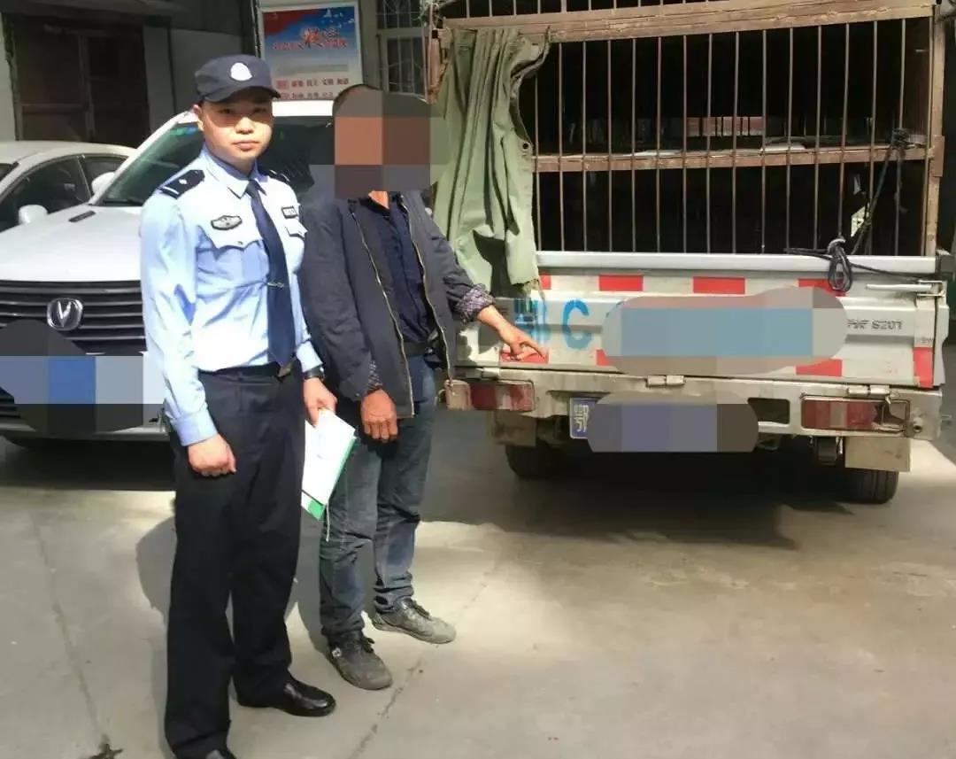 河南白河查处一起非法运输生猪案,运输生猪未经检疫