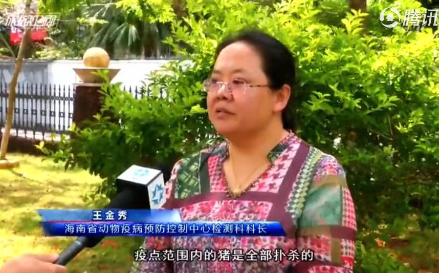 防控非洲猪瘟:海南严控疫情扩散 保障猪肉供应稳定