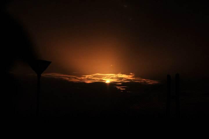 """温氏股份一季度亏损4.6亿,猪周期回归前先迎接""""黎明前的黑夜"""""""