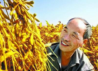 """国家出台新规,大豆涨价有""""希望""""了!"""