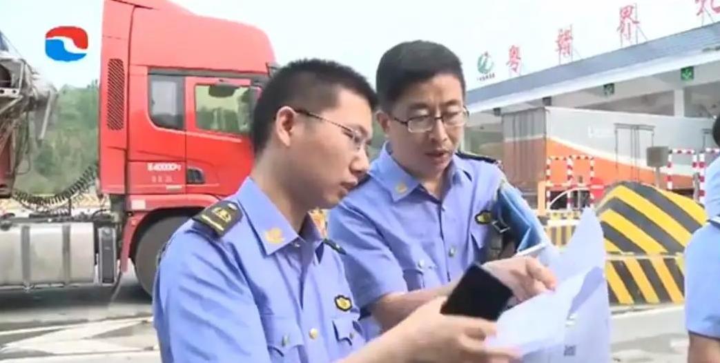 广东河源半天查获4辆违法调猪车辆、生猪660头!