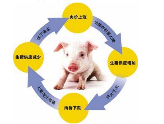 """""""猪周期""""对中国经济有什么含义与影响!"""
