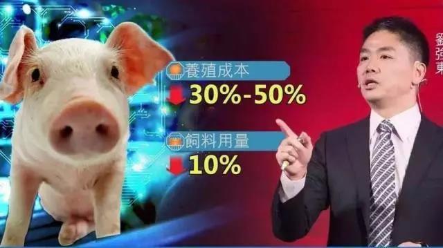 京东战略投资精气神,深度探索生猪智慧养殖全产业链