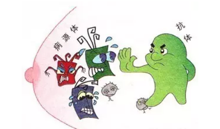 印遇龙:通过饲料调控生猪免疫状态,防控非洲猪瘟