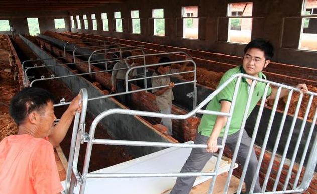 养猪难是因为没用好办法,四点措施可提高猪场效益!