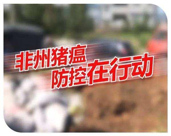 洪江市太平乡非洲猪瘟防控不松懈,专人回收餐厨剩余物