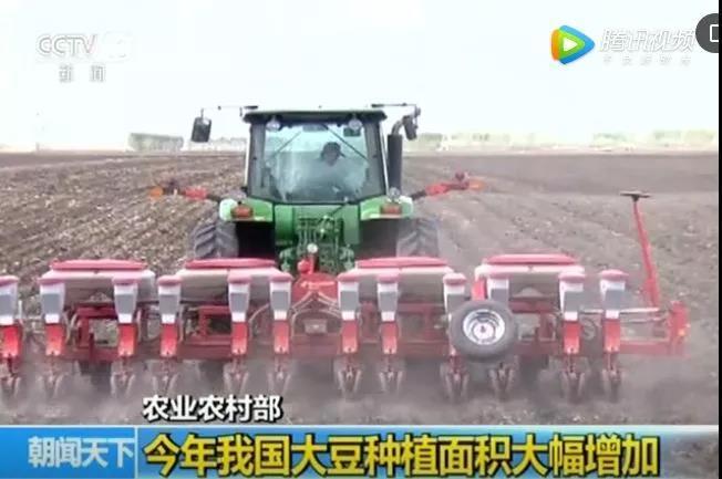 2019大豆种植面积