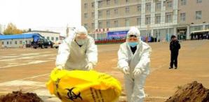 海口猪瘟死亡23人系不实谣言 关于海南非洲猪瘟的谣言还有这些!