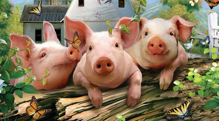 2019年5月22日仔猪价格:20公斤仔猪价格行情走势