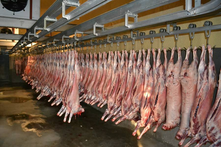 江苏常州生猪屠宰场将减至10家以内 超75%屠宰场将被关闭