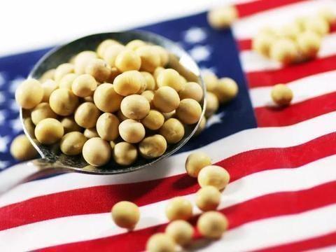 """美豆遭遇 出口、价格、库存""""三重伤"""" 中国大豆迎发展机遇期"""