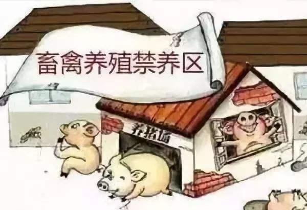 禁养区内搞养殖 河南一养猪场场长败诉