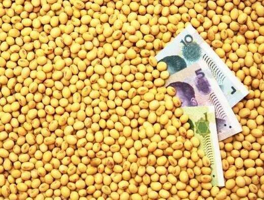 国产大豆当自强 2022年达到1.5亿亩