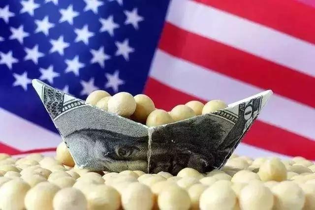 3000万吨大豆难找接盘侠,美国大豆出口协会:不忍失去中国市场