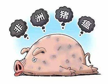 疫情播报!贵州都匀市在截获的外省非法运入生猪中排查出非洲猪瘟疫情