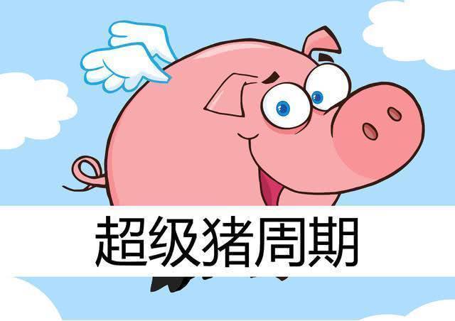 """中粮期货:猪价上涨节奏是确认超级""""猪周期""""的关键因素"""