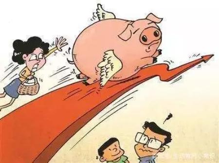猪价最高上涨到9块1,已经卖猪的养殖户你后悔了吗?