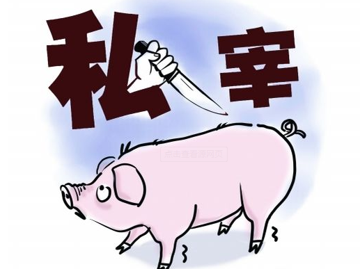 龙华区严打农村私屠乱宰 查获并销毁私宰猪肉500斤