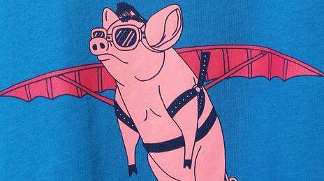 2019猪价上涨最新消息:猪价出现止涨信号 再涨空间或有限