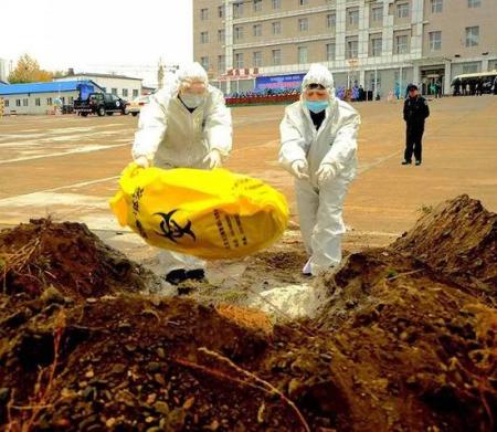 日本岐阜县再次发现猪瘟感染 扑杀8120头猪!