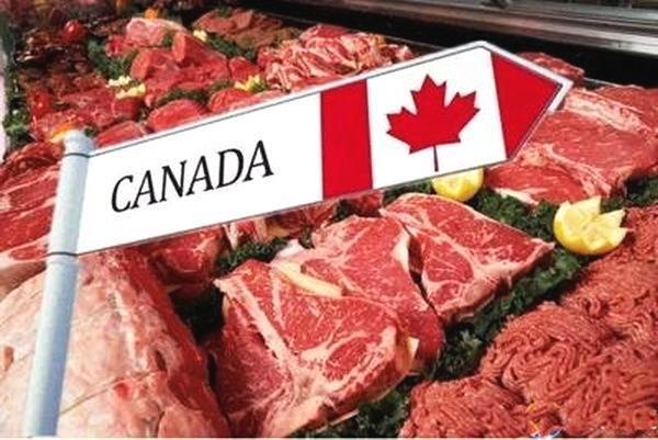 中国将对加拿大猪肉制品实施100%开箱检查