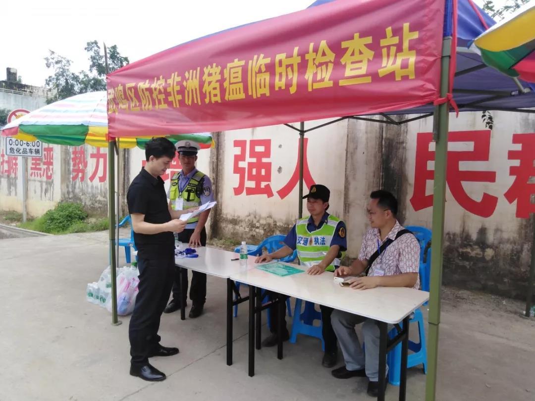 南宁市设26个临时检查站强化生猪调运监管