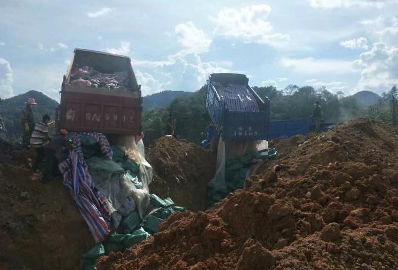 江城县依法查扣无证运输生猪产品28.84吨 已进行无害化处理