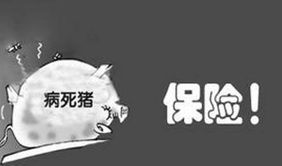 虚构生猪投保数量 德阳中江县两男子骗取生猪保险补助被抓