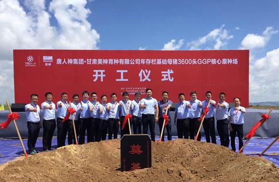 唐人神集团天水3600头GGP核心原种场养殖项目正式开工