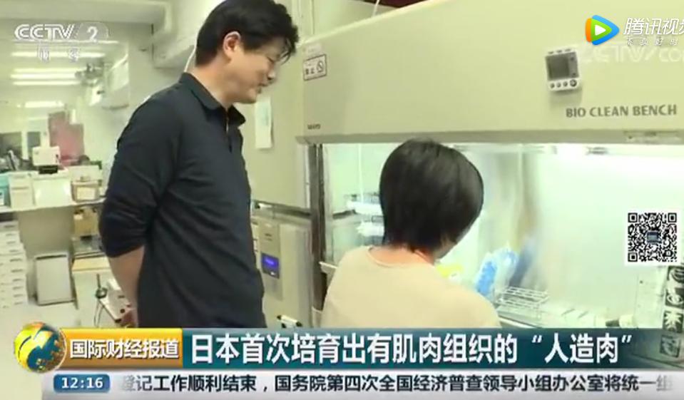 """日本首次培育出肌肉组织 """"人造牛排"""" 未来或成饮食新选择"""