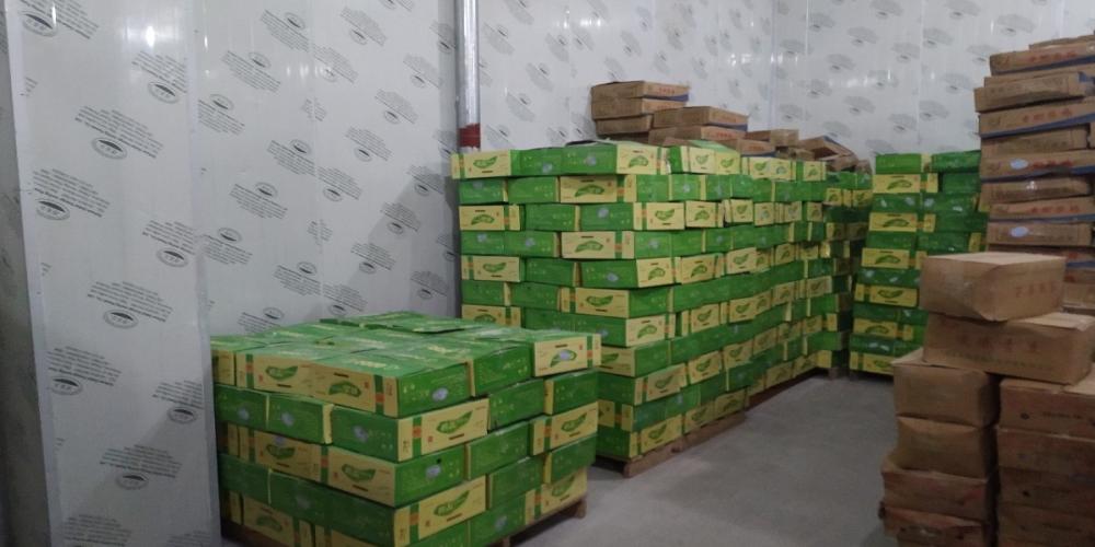 四川营山县查获染疫非洲猪瘟病毒冻猪产品18.446吨!