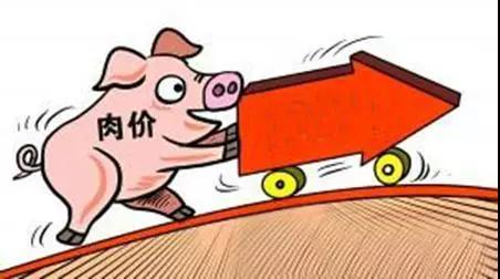 """猪肉涨价了!""""二师兄""""销量小幅上涨 售价贵了近一元"""
