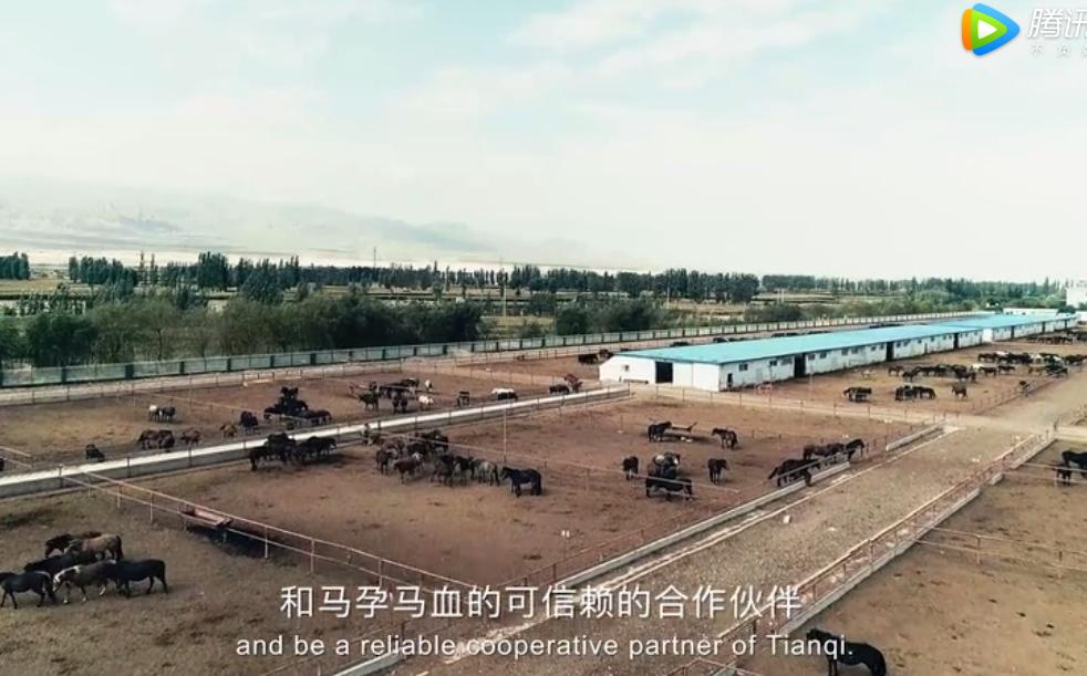 甘肃天祁生物科技有限公司是一家主营家畜血液制品生产与销售