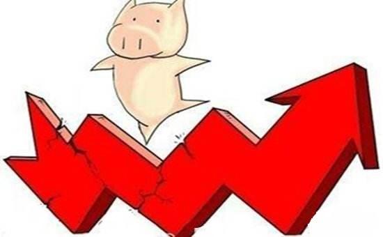 生猪价格拉锯战升级,10个月之前的窘态再次上演!
